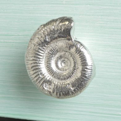 Ammonite Fossil Cupboard Handle Small | Image 1