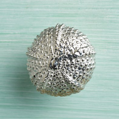 Sea Urchin Solid Pewter Drawer Pull | Image 1