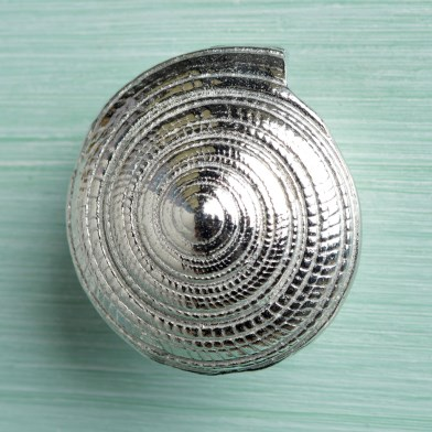 Pewter Seashell Drawer Pulls Spiral Shell Furniture Handles | Image 1