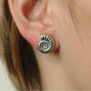 Ammonite Fossil Stud Earrings | Image 4