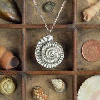 Ammonite Necklace, Pewter and Silver Fossil Jewellery Gifts | Image 3