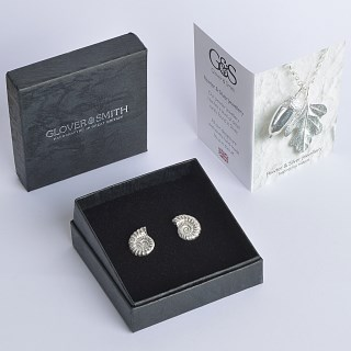 Ammonite Fossil Stud Earrings | Image 3