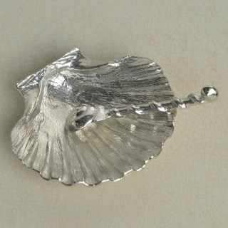Scallop Shell Bowl and Spoon | Image 3