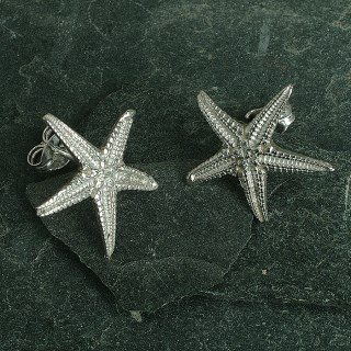 Starfish Stud Earrings | Image 3